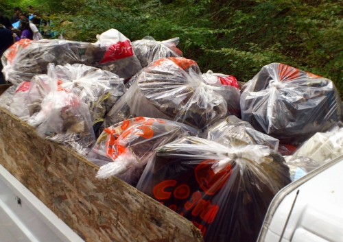 moving2012_002